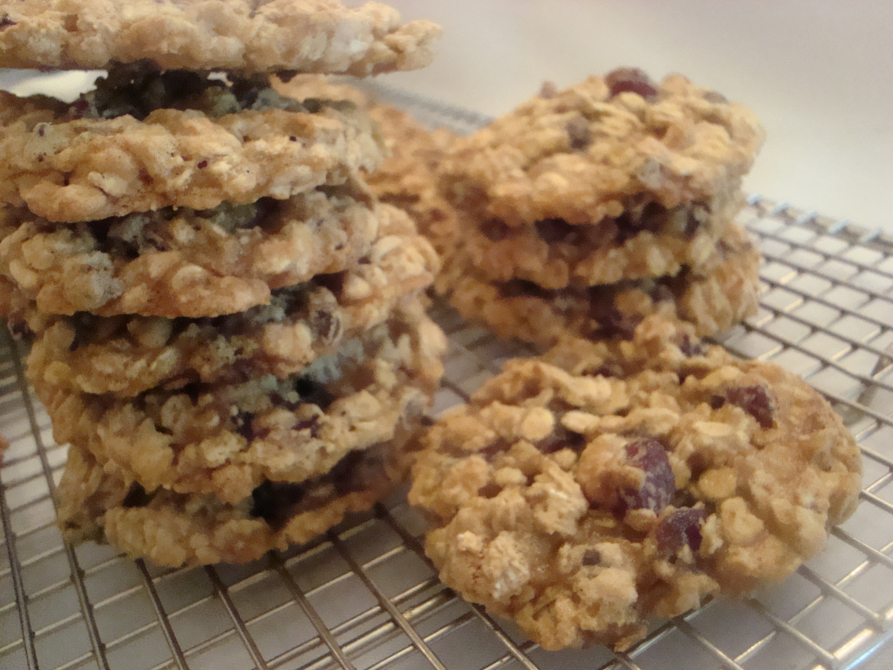 Dried Cherry and Chocolate Chip Oatmeal Cookies